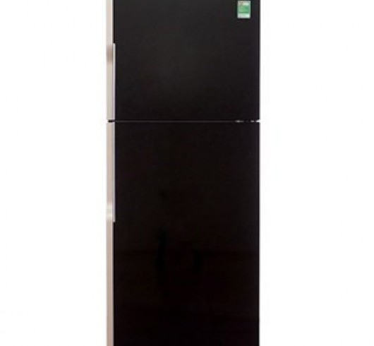 Tủ lạnh Hitachi R-VG440PGV3 ( 365 lít)
